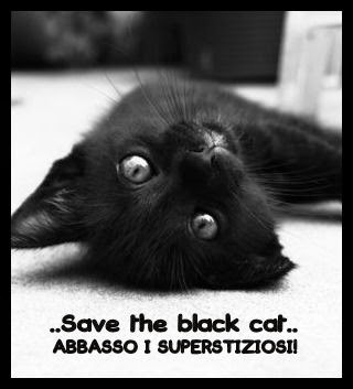 save-the-black-cat